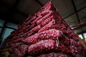 Аналитики сопоставили цены при госзакупках продуктов питания